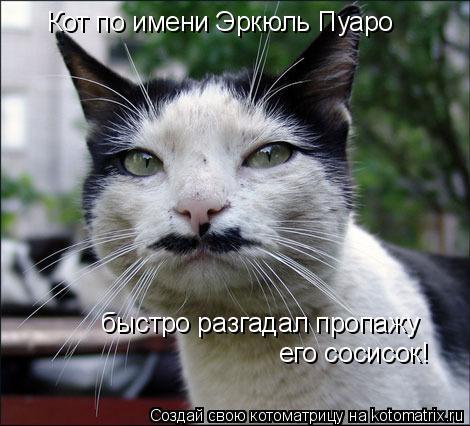 Котоматрица: Кот по имени Эркюль Пуаро быстро разгадал пропажу его сосисок!
