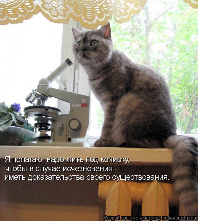 Котоматрица: Я полагаю, надо жить под копирку,  чтобы в случае исчезновения - иметь доказательства своего существования.