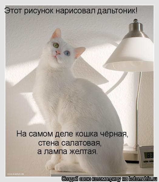 Котоматрица: Этот рисунок нарисовал дальтоник! На самом деле кошка чёрная, стена салатовая, а лампа желтая.