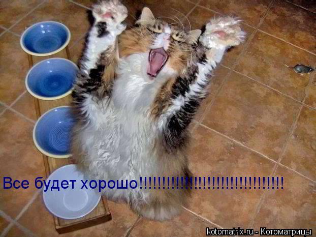 Котоматрица: Все будет хорошо!!!!!!!!!!!!!!!!!!!!!!!!!!!!!!!!
