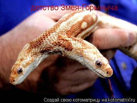 Котоматрица: детство Змея-Горыныча