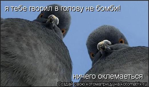 Котоматрица: я тебе гворил в голову не бомби! ничего оклемаеться