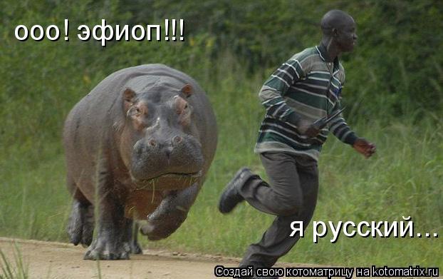 Котоматрица: ооо! эфиоп!!! я русский...