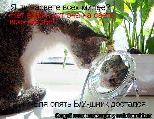 Котоматрица: -Я ли насвете всех милее? -Нет ешкин кот она на свете  всех милее! -Бля опять Б/У-шник достался!
