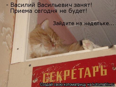 Котоматрица: - Василий Васильевич занят! Приема сегодня не будет! Зайдите на недельке...