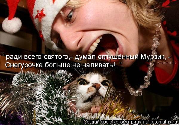 """Котоматрица: """"ради всего святого,- думал оглушённый Мурзик, - Снегурочке больше не наливать!.."""""""