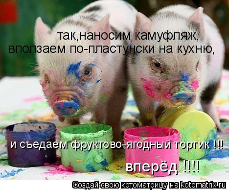 Котоматрица: так,наносим камуфляж, вползаем по-пластунски на кухню, вперёд !!!! и съедаем фруктово-ягодный тортик !!!