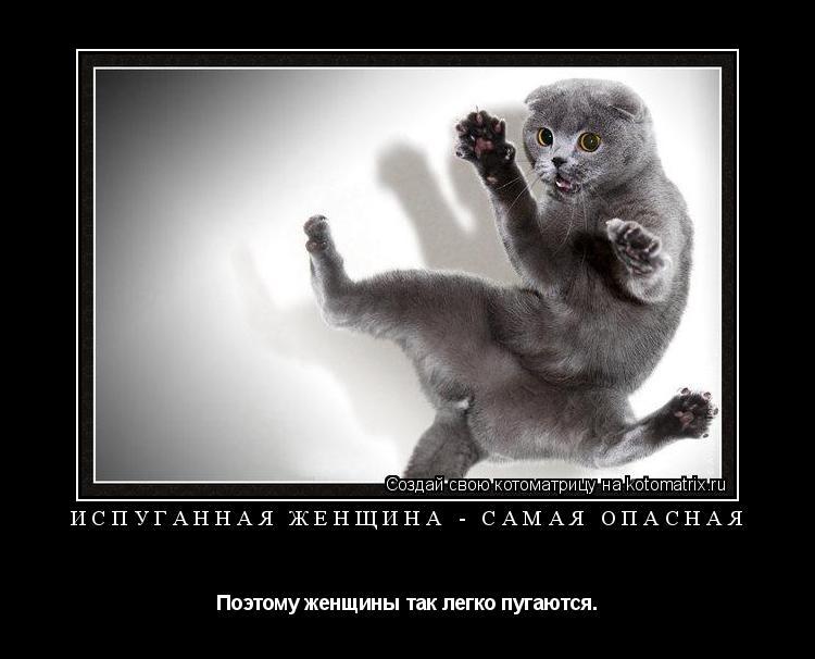 Котоматрица: Испуганная женщина - самая опасная Поэтому женщины так легко пугаются.