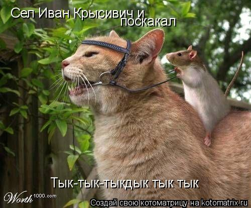 Котоматрица: Сел Иван Крысивич и поскакал Тык-тык-тыкдык тык тык