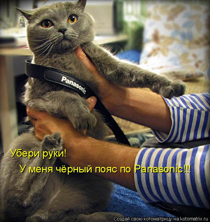 Котоматрица: Убери руки! У меня чёрный пояс по Panasonic!!!