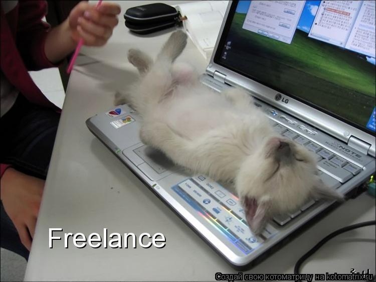 Котоматрица: Freelance