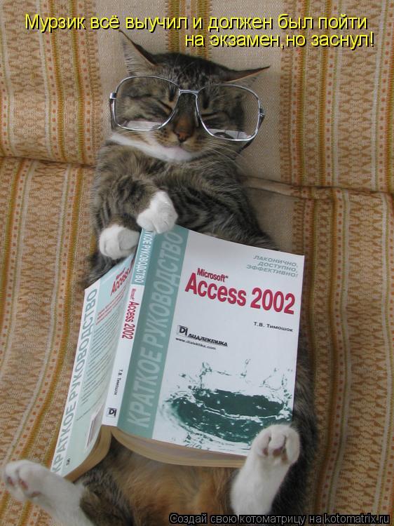 Котоматрица: Мурзик всё выучил и должен был пойти на экзамен,но заснул!