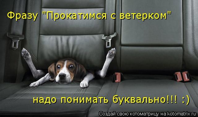 """Котоматрица: Фразу """"Прокатимся с ветерком""""  надо понимать буквально!!! :)"""