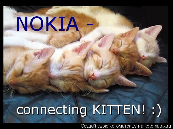 Котоматрица: NOKIA - connecting KITTEN! :)