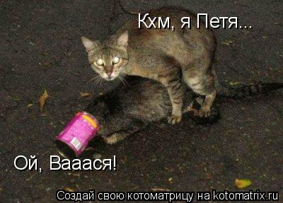 Котоматрица: Ой, Вааася! Кхм, я Петя...