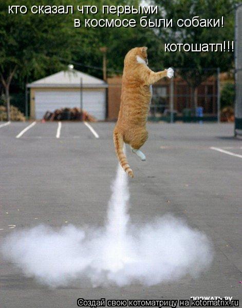 Котоматрица: кто сказал что первыми  в космосе были собаки! котошатл!!!
