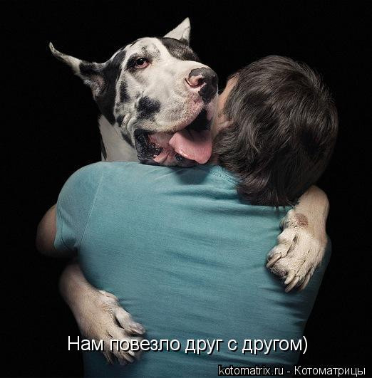Котоматрица: Нам повезло друг с другом)