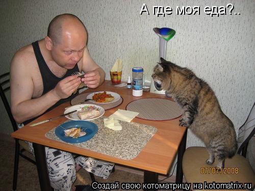 Котоматрица: А где моя еда?..