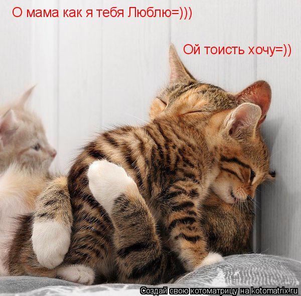 Котоматрица: О мама как я тебя Люблю=))) Ой тоисть хочу=))