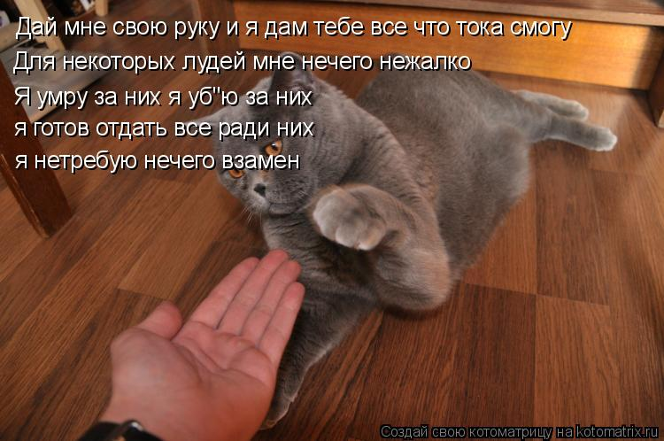 Дай мне свои руки дай мне свои