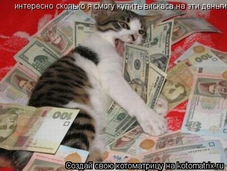 Котоматрица: интересно сколько я смогу купить вискаса на эти деньги?