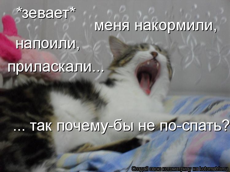 Котоматрица: *зевает* меня накормили, напоили, приласкали... ... так почему-бы не по-спать? =)