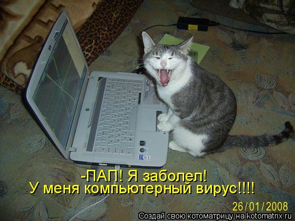 Котоматрица: У меня компьютерный вирус!!!! -ПАП! Я заболел!