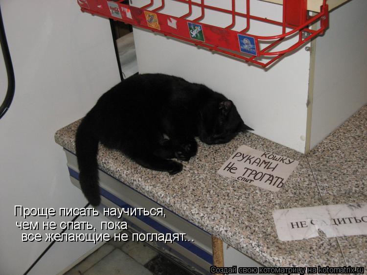 Котоматрица: Проще писать научиться,  чем не спать, пока все желающие не погладят...