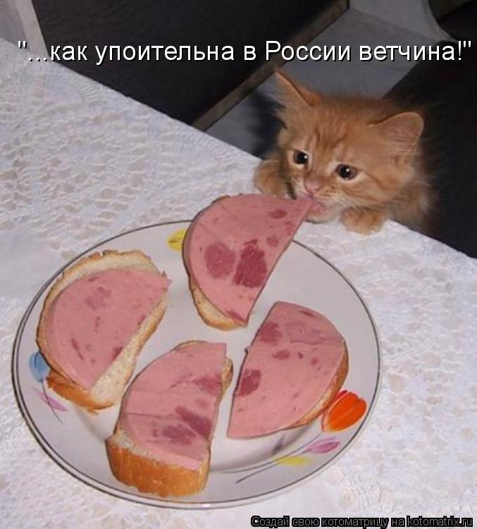 """Котоматрица: """"...как упоительна в России ветчина!"""""""