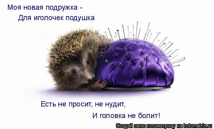 Котоматрица: Для иголочек подушка Моя новая подружка - Есть не просит, не нудит, И головка не болит!