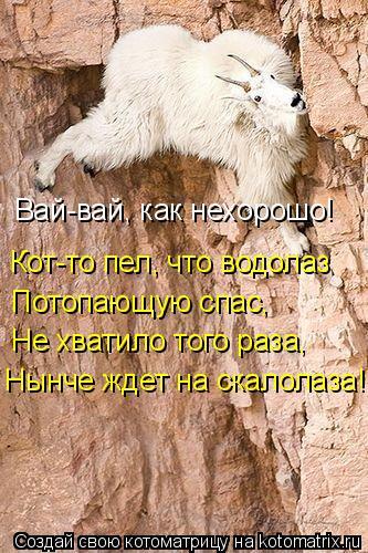 Котоматрица: Кот-то пел, что водолаз Потопающую спас, Не хватило того раза, Нынче ждет на скалолаза! Вай-вай, как нехорошо!