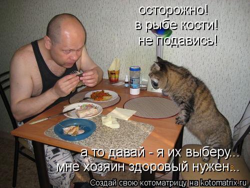 Котоматрица: осторожно!  в рыбе кости! не подавись! а то давай - я их выберу...  мне хозяин здоровый нужен...