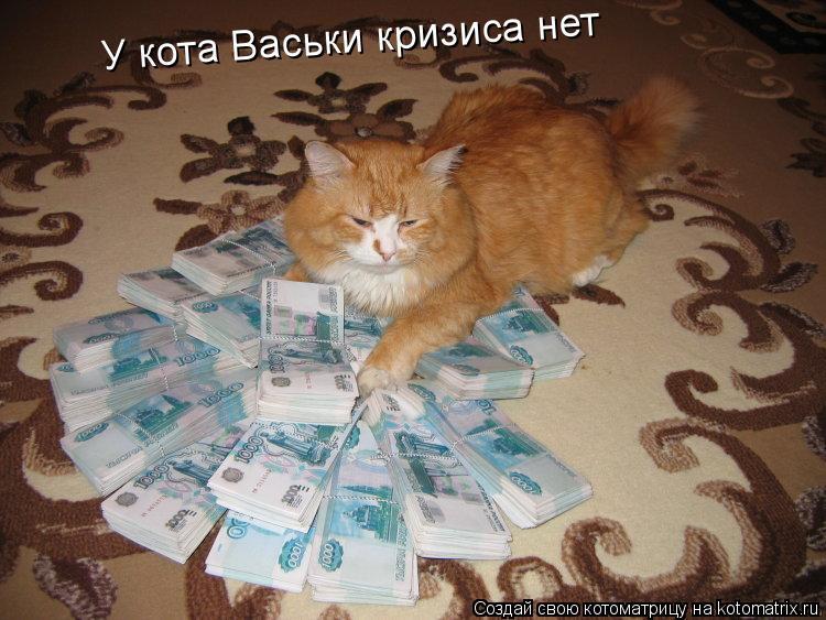 Котоматрица: У кота Васьки кризиса нет