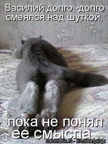 Котоматрица: Василий долго -долго смеялся над шуткой, пока не понял ее смысла... смеялся над шуткой,  пока не понял  ее смысла...