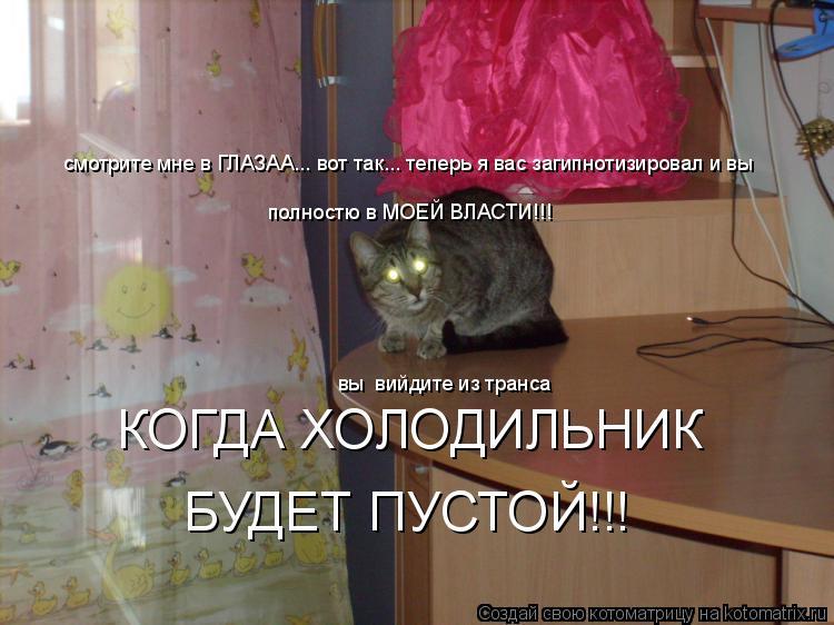 Котоматрица: смотрите мне в ГЛАЗАА... вот так... теперь я вас загипнотизировал и вы полностю в МОЕЙ ВЛАСТИ!!! вы  вийдите из транса  КОГДА ХОЛОДИЛЬНИК БУДЕТ