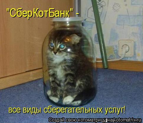 """Котоматрица: """"СберКотБанк"""" - все виды сберегательных услуг!"""