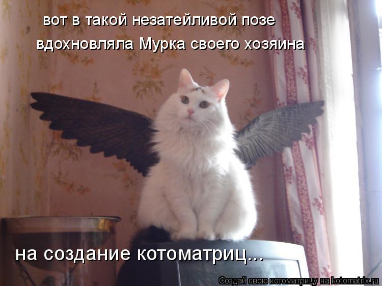 Котоматрица: вот в такой незатейливой позе вдохновляла Мурка своего хозяина на создание котоматриц...