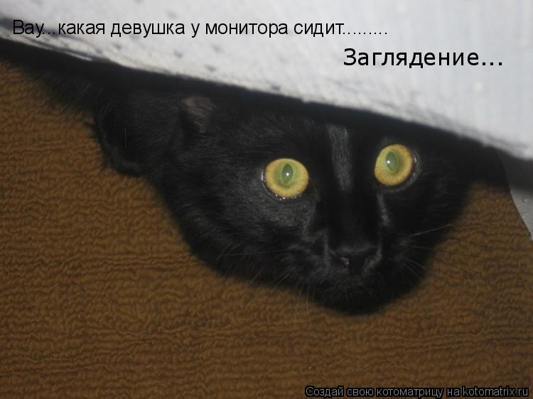 Котоматрица: Вау...какая девушка у монитора сидит......... Заглядение...