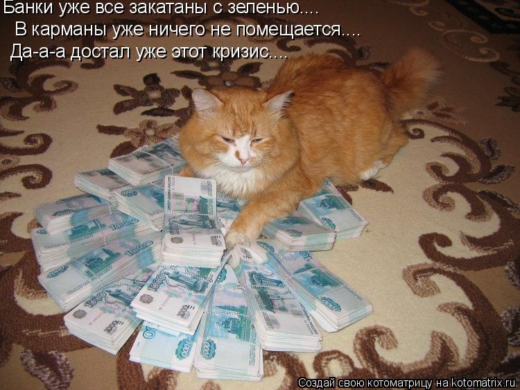 Котоматрица: Банки уже все закатаны с зеленью.... В карманы уже ничего не помещается.... Да-а-а достал уже этот кризис....