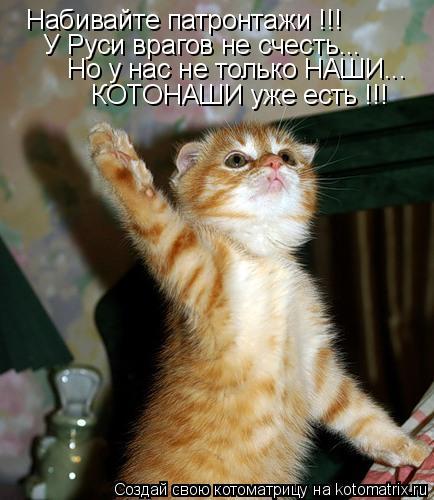 Котоматрица: Набивайте патронтажи !!! Набивайте патронтажи !!! У Руси врагов не счесть... Но у нас не только НАШИ... КОТОНАШИ уже есть !!!