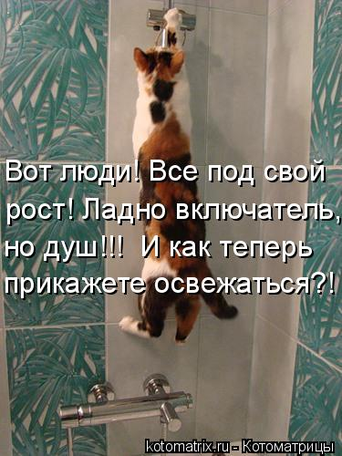 Котоматрица: Вот люди! Все под свой  рост! Ладно включатель,  прикажете освежаться?! но душ!!!  И как теперь