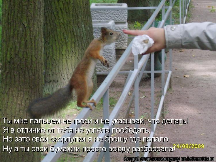 Котоматрица: Ты мне пальцем не грози и не указывай, что делать! Я в отличие от тебя не успела пообедать. Но зато свои скорлупки я не брошу где попало Ну а т