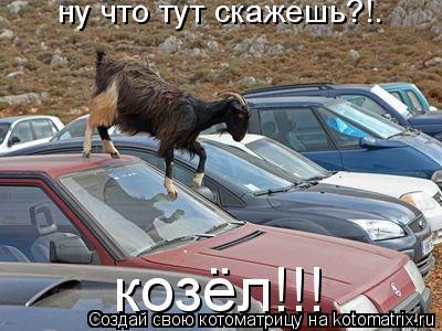 Котоматрица: ну что тут скажешь?!. козёл!!!