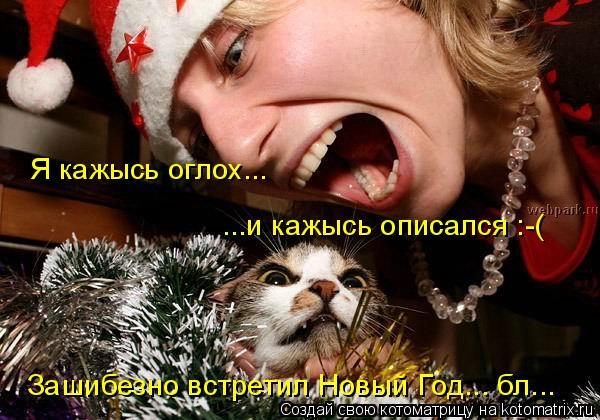 Котоматрица: Я кажысь оглох... ...и кажысь описался :-( Зашибезно встретил Новый Год... бл...