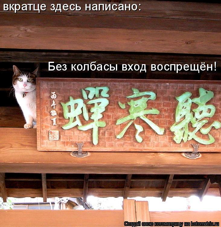 Котоматрица: вкратце здесь написано: Без колбасы вход воспрещён!