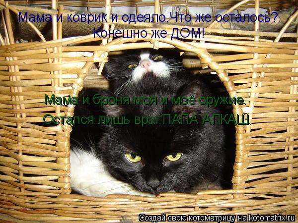 Котоматрица: Мама и коврик и одеяло.Что же осталось? Конешно же ДОМ! Мама и броня моя и моё оружие. Остался лишь враг,ПАПА АЛКАШ.