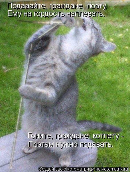 Котоматрица: Подааайте, граждане, поэту, Ему на гордость наплевать. Гоните, граждане, котлету - Поэтам нужно подавать.