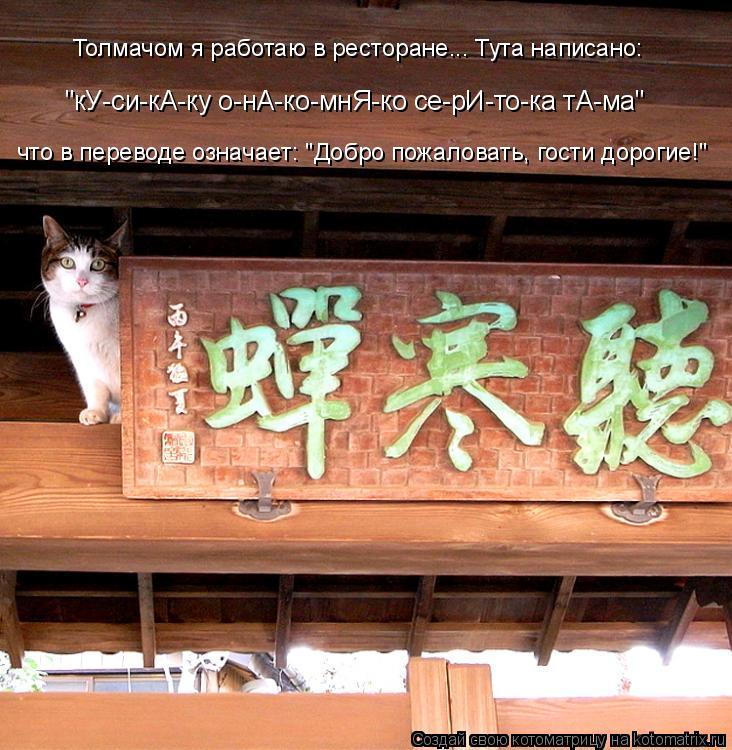"Котоматрица: Толмачом я работаю в ресторане... Тута написано: ""кУ-си-кА-ку о-нА-ко-мнЯ-ко се-рИ-то-ка тА-ма"" что в переводе означает: ""Добро пожаловать, гости"