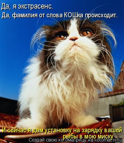 Котоматрица: Да, фамилия от слова КОШка происходит. Да, я экстрасенс. И сейчас я дам установку на зарядку вашей  рыбы в мою миску
