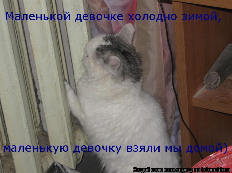 Котоматрица: Маленькой девочке холодно зимой,  маленькую девочку взяли мы домой)
